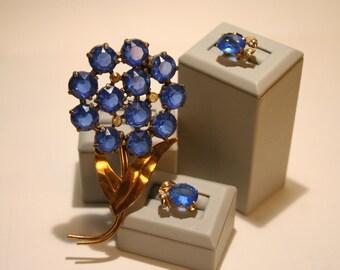 Blue Flower Brooch and Earrings