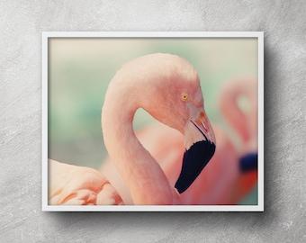 Flamingo print art, Printable flamingo, Flamingo poster, Pink flamingos, Flamingo print, Flamingo wall art, Flamingo wall decor