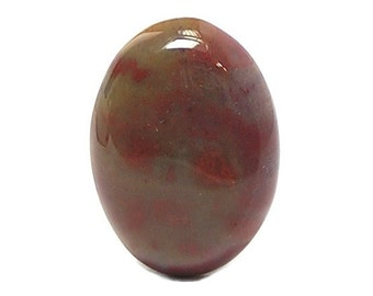 Agate Gem Stone Petrified wood agate Oval Calibrated Cabochon 25 x 18 mm Semiprecious Utah Gemstone