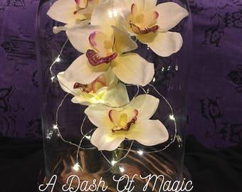White Single Cymbidium Orchid Spray