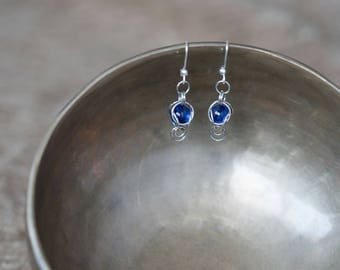 Chain Maille Captured Earrings Silver and Blue