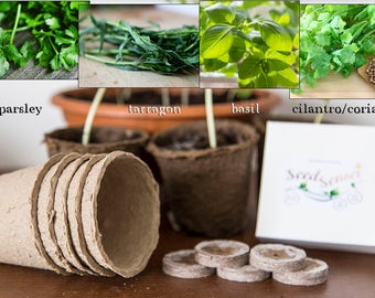 Plant seed growing kit, steak herb mix, best grill herb mix, parsley, tarragon, basil, cilantro / coriander, gift for man, housewarming gift