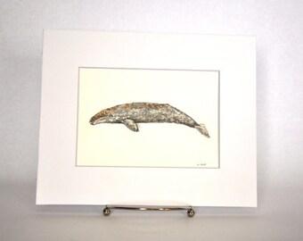 Original Watercolor Gray Whale