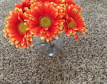 Orange Pops!! (Daisies)