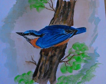 Original watercolour painting of a nuthatch By Wayne Baker