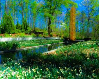 Original photo from Atlanta Botanical Gardens