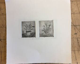 Duel house plant etching