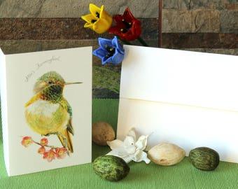 Allen's Hummingbird (emerald)