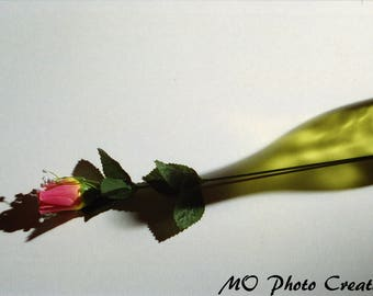 Pink Flower Green Bottle Still Life Color Photograph