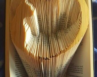 Book fold cat
