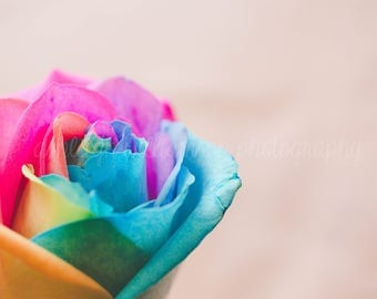 Ranbow Rose1