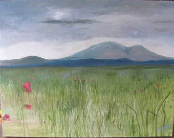 Poppy Field Before The Storm