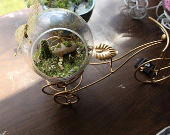 Miniature fantasy garden