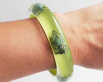 Salad green bright lucite bracelet with real insects