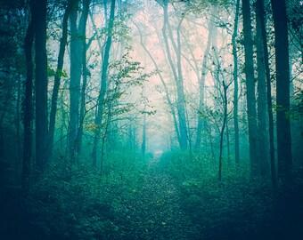 Foggy Nature Photography - Fairytale Landscape - Enchanted Woods - Misty Alabama Morning - Mysterious Photo