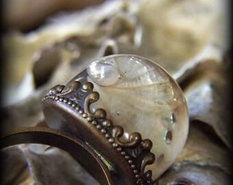 Miniature Specimen Ring-Abalone Shell