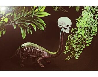 dinosaur skull print 8 x 12 PREHISTHORROR