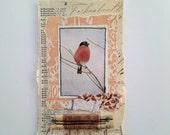 Original Collage - Robin