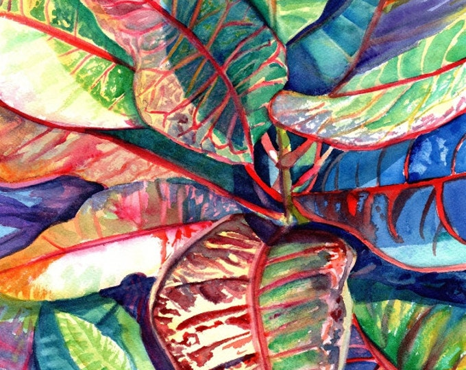 croton tropical leaves 8x10 print kauai hawaii colorful foliage plants  hawaiian decor marionette taboniar kauaiartist kauai prints