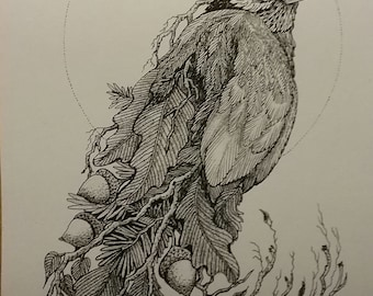 Pen and Ink drawing of bird,print,wildlife.