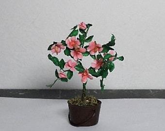 Dollhouse hibiscus