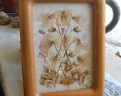 PRESSED VIOLETS Framed Picture, Gently Muted Blooms Redbuds Mexican Sage Detailed Petals Organic Grown, 4 x 6 Wood Mini Stand Mothers Day