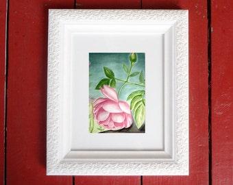 Fine Art Print: Pink Rose