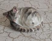 sleeping stoneware tiger tabby kitten kitty cat miniature figurine statue sculpture
