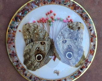 The Vintage Brazilian Butterfly with Flowers Dome Decor