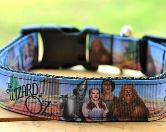 Wizard of OZ dog collar & leash set