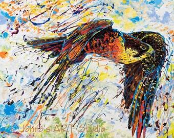 Bird print, Falcon art, Bird of Prey art, Bird art, Nature art, metal prints,  Johno Prascak, Johnos Art Studio