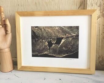 Leaf - framed fine art print