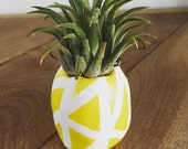 Pineapple vase air plant, desk plant, air plant gift, gift under 15, housewarming, welcome, office, co-worker gift