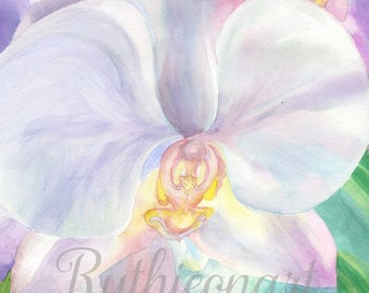 Orchid Watercolor Print