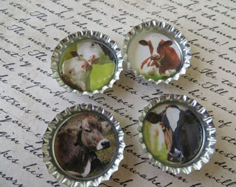 Cows II Bottle Caps Magnets Or Pins Set