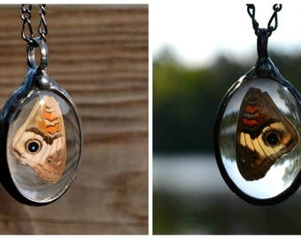 Butterfly Wing, Nature Jewelry, Two Sided Necklace, Summer Trend, Butterfly Nature Jewelry, Insect Jewelry, Real Butterfly Wing (2548)