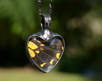 Butterfly Necklace, Yellow Swallowtail, Heart Necklace, Real Butterfly Wing, Butterfly Jewelry, Wing Necklace, Butterfly Pendant (2765B)