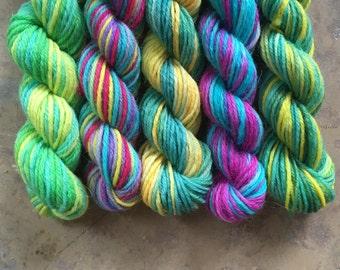 Jelly Slugs: Harry Potter sock yarn mini skein set - 25 yard skeins