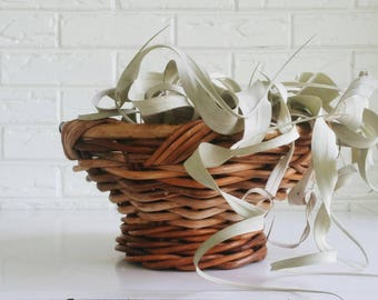 Chunky Wicker Willow Bamboo Basket Bowl - Modern Bohemian Minimalist - Farmhouse Decor
