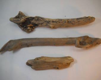 Pacific Northwest Driftwood Pieces Washington State Driftwood Olympic Peninsula Driftwood