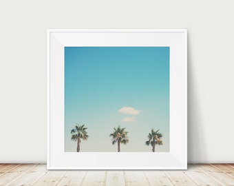 palm tree photograph palm tree print palm tree art travel photography french decor France photograph wanderlust art coastal print