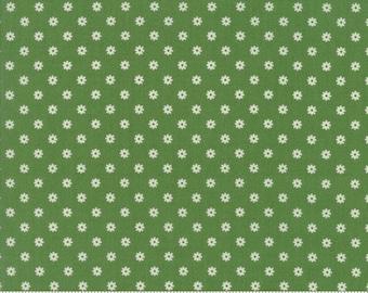 Hop, Skip, and a Jump!, 21706-26 green circle, by American Jane for moda fabrics