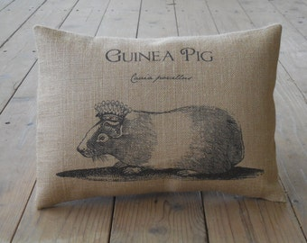 Guinea Pig Burlap Decorative Pillow, Shabby Chic, Pigs, Farmhouse Pillows, INSERT INCLUDED