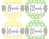 Baby Bump Stickers, Maternity Stickers, Belly Stickers, Pregnancy Stickers, Yellow and Green, Milestone Pregnancy Week Stickers (239)