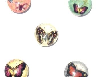 Needle Minder - Butterflies