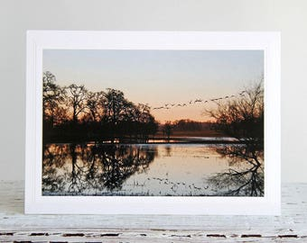 Laguna Sunrise Photo Greeting Card, Water Reflections of Trees and Flying Geese, Fine Art Photography, Nature Photography, Atmospheric Photo