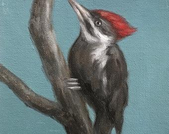 Original Oil Painting Little Pileated Woodpecker