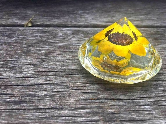 Rudbeckia Hirta Preserved in Clear Casting Resin enclosed in a Crystal Structure