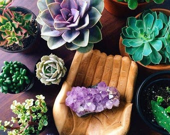 Amethyst Crystals, Succulents, Succulent and Crystal Pack of 10 pcs, Interior Design, Accessories, Decorating Accessories