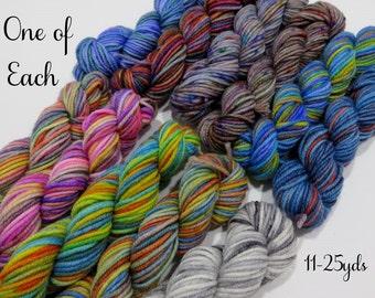 One of Each- 11 Sock yarn mini skeins, 25 yds each, 275 yds total